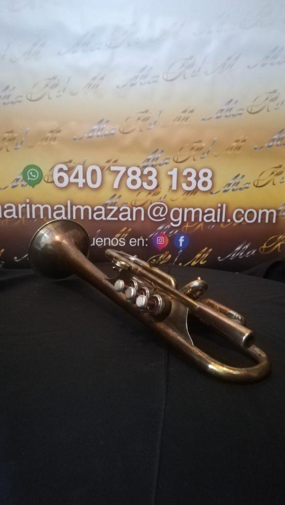 manteniminto de trompeta